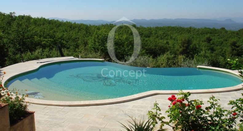 OConcept_decors_piscine rascasse